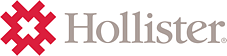 Hollister 2